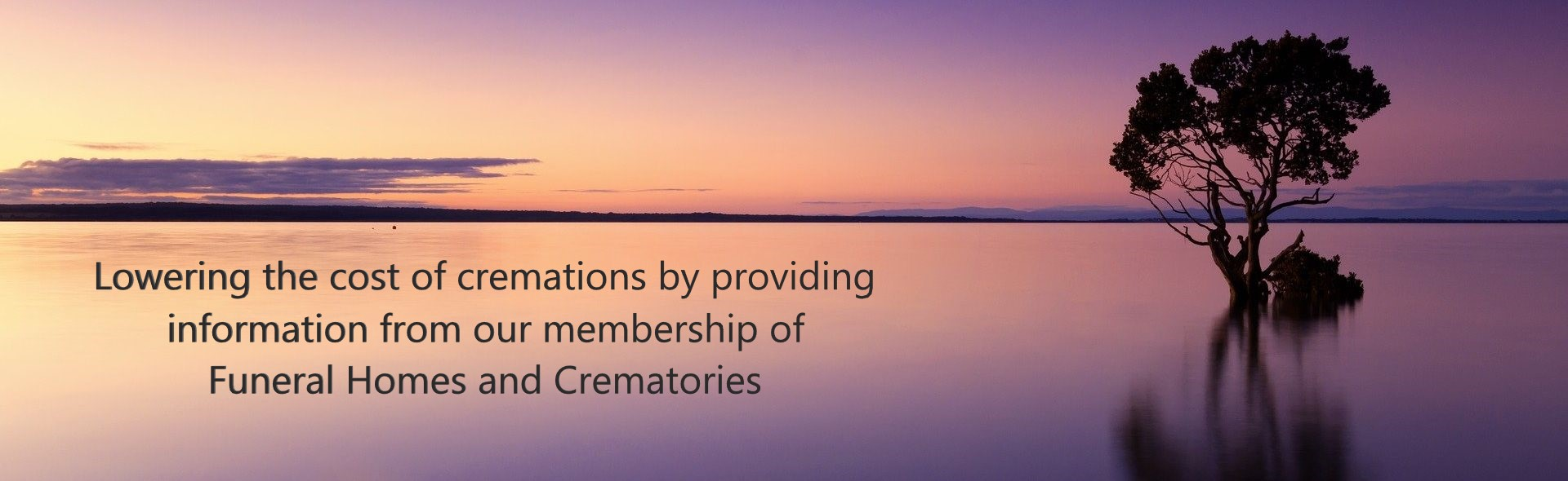 Simple affordable cremations